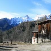 territorio dolomiti orto alpino